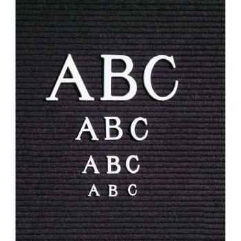 The grooved black letter board shown with the ABC's posted on it.