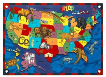 A rectangle shaped United States rugs for kids is displayed.